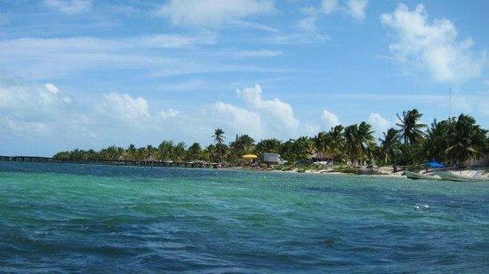 Mexico Maya Caribe: biosfera6