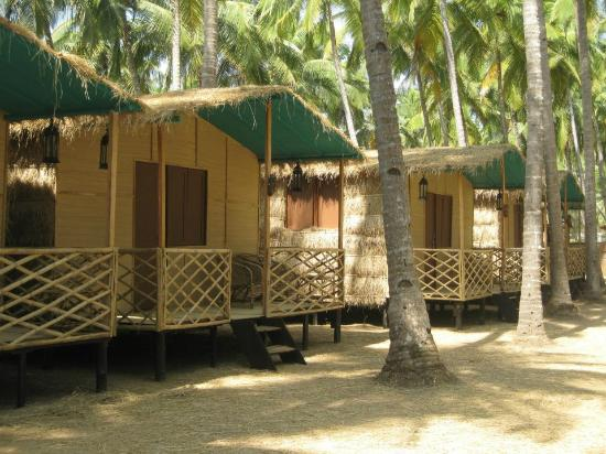 Coastal Jewel of Goa