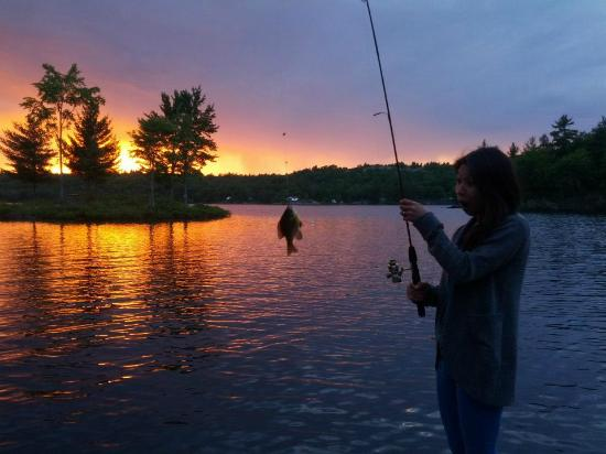 Springwood Cottages: fishing on the docks