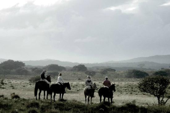 Bhangazi Horse Safaris: Stunning landscape