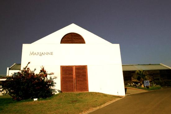 Marianne Wine Estate Guesthouse: Marianne Estate
