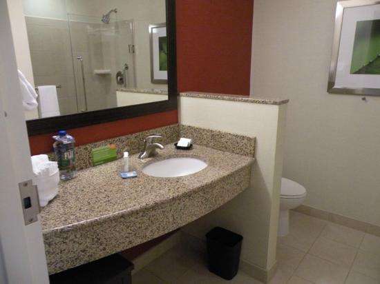 Courtyard Greenville Downtown: Very nice bathroom