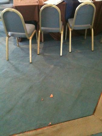 Starhotels Terminus: Pezzi di colla della moquette nella sala...