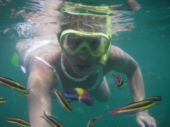 Caldera Boating Tours: Snorkeling