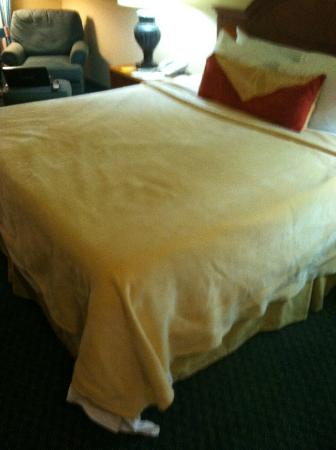 Hilton Garden Inn Houston / Bush Intercontinental Airport: Made bed with blanket only