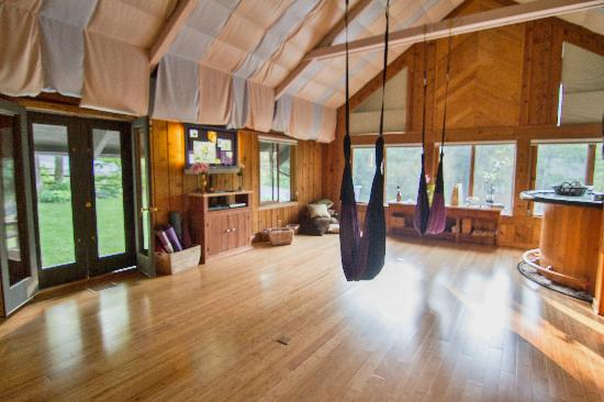 Yoga BnB: The Yoga studio w swings for private and group lessons