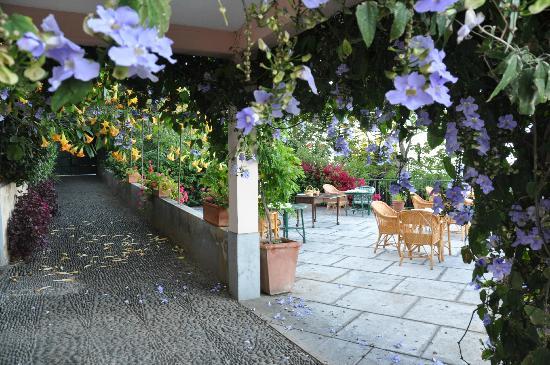 Quinta Sao Goncalo: la terrasse où l'on prend le petit dejeuné