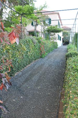Quinta Sao Goncalo: allée dans le jardin