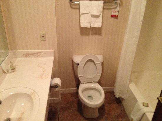 Super 8 Lowell/Bentonville/Rogers Area: Room 119