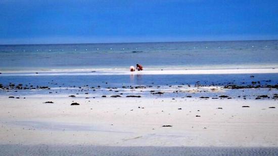 Dumaluan Beach Resort 2: Nice