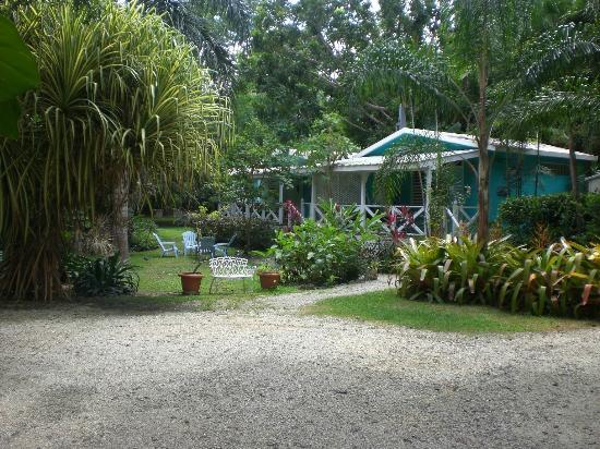 Tropic Cabanas: Lush Gardens
