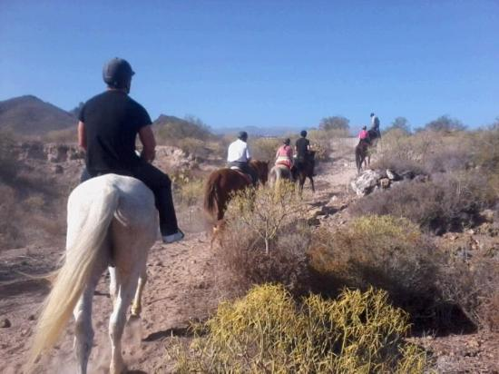 Centro hípico Horse Riding Adventures in Tenerife: Hacking down the valley