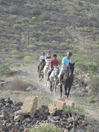 Centro hípico Horse Riding Adventures in Tenerife: Hacking down the top field