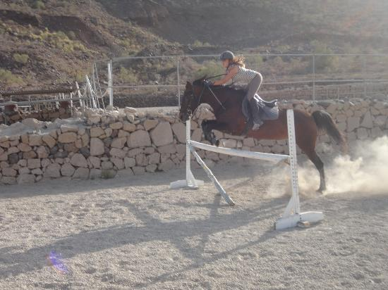Centro hípico Horse Riding Adventures in Tenerife: jumping lessons