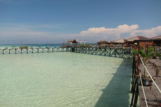 Maratua Paradise Resort : Water Villa