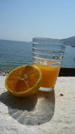 Anemoessa Studio Apartments: Breakfast with local oranges (terrace)