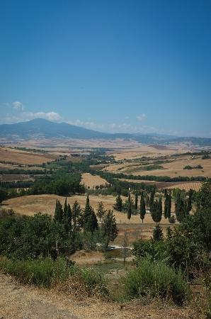 Podere Il Casale: View