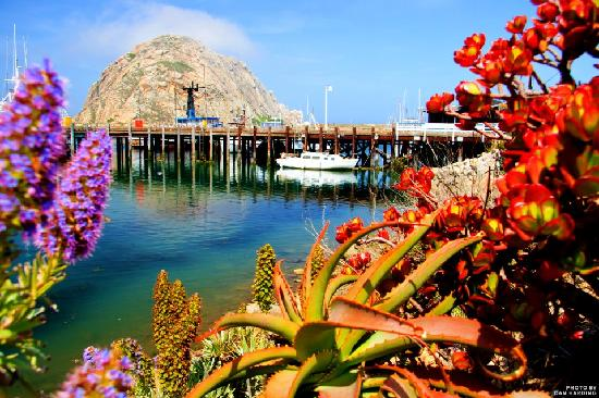 Morro Bay, CA: Photo by Dan Harding