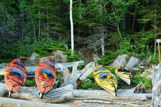 Fjord en kayak: Kayaks secured from the Tides
