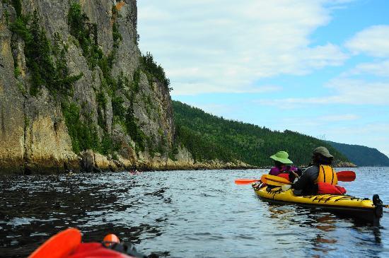 Fjord en kayak: Towering cliffs