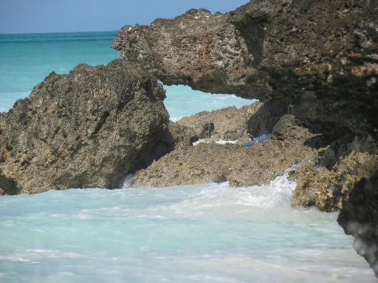 Essque Zalu Zanzibar: Alta marea