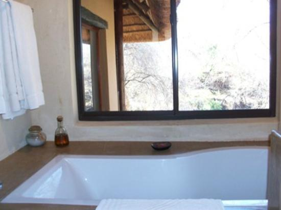 Three Cities Madikwe River Lodge: dalla sala da bagno