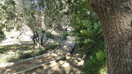 Clos Saint-Jean : Garden