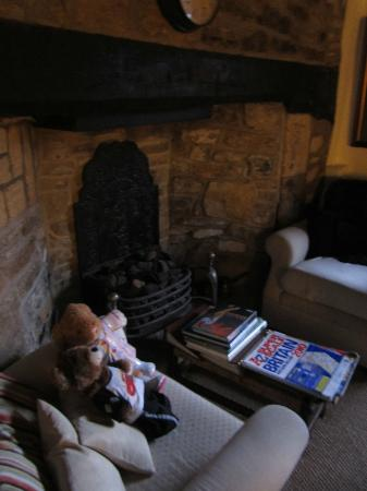 The Plaine Guesthouse: Fireplace in Dining Room