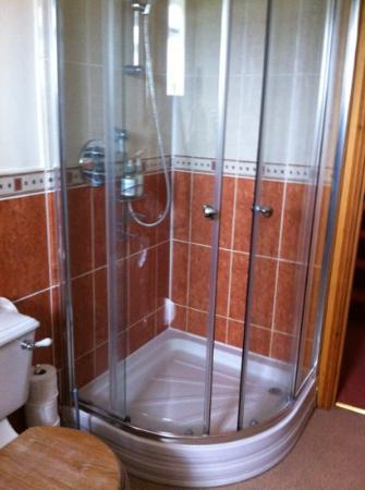 Wydon Farm B&B : mega shower