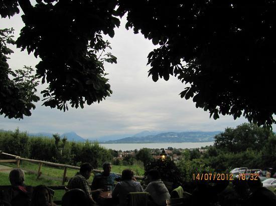 Hotel Montfort-Schlössle: Diese Aussicht...
