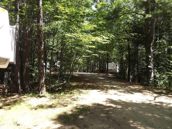 Sturbridge RV Resort: Upper section looking down the hill from site S34