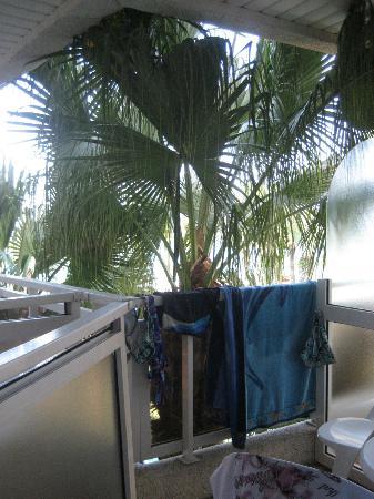 Hotel Caprici: вид с нашего балкона