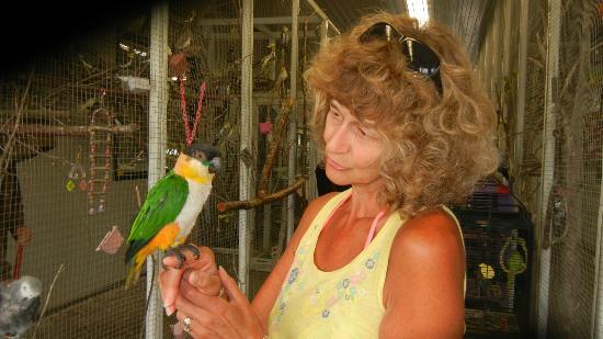 "World Parrot Refuge: ""Green greeter"" at the entrance"
