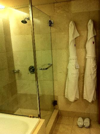 Stamford Plaza Auckland: shower
