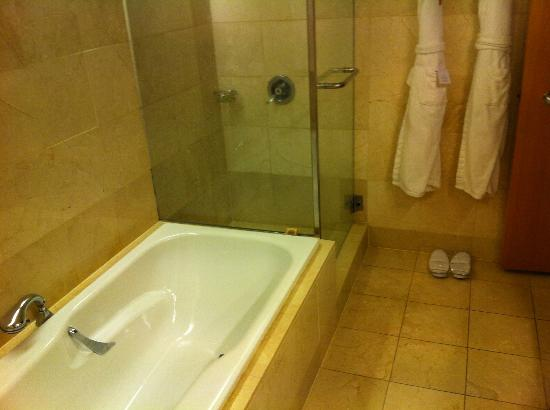 Stamford Plaza Auckland: bath and shower