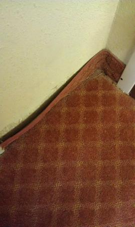 The Inn at Creedmoor: Dirt in corner and baseboard by door
