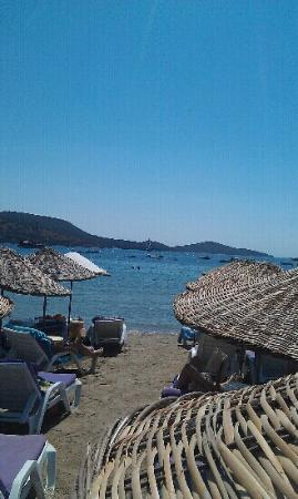 Sea view from Salmakis sun beds, great spot on beach.