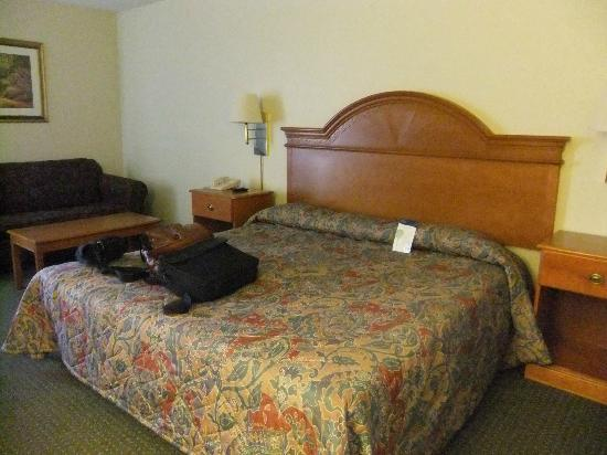 Americas Best Value Inn Moline : the bed