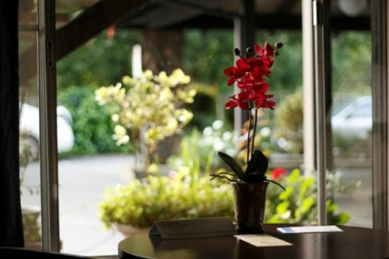 Occidental Hotel: Flower in Room