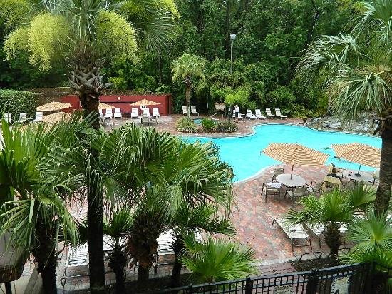 Parkway International Resort: pool area
