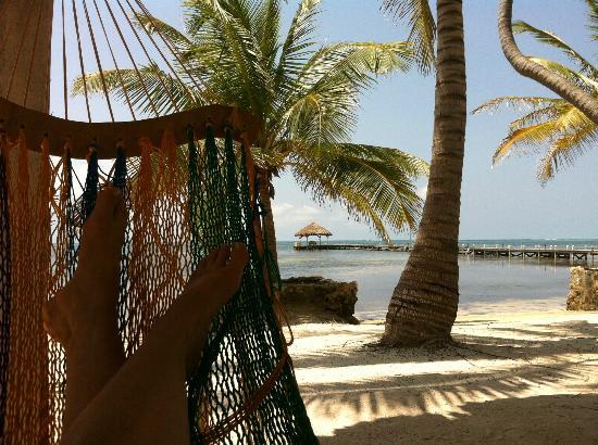 El Pescador Resort: Hammock on the beach
