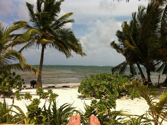 El Pescador Resort: the resort grounds