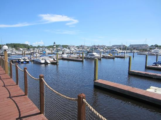 Holiday Inn Express N. Myrtle Beach-Little River: Boats in harbor