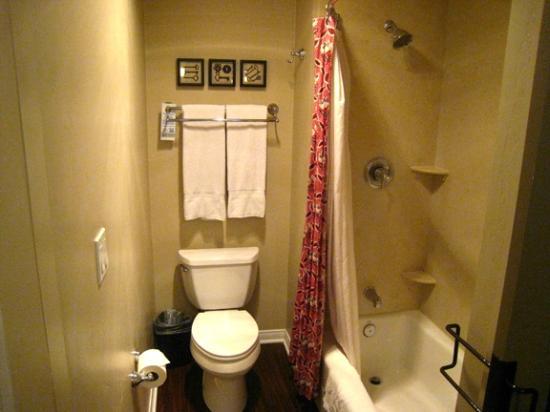 هادستين هاوس: Bathroom