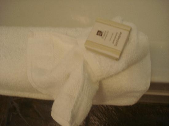 The Lodge at Skeena Landing: bath soap (very nice)