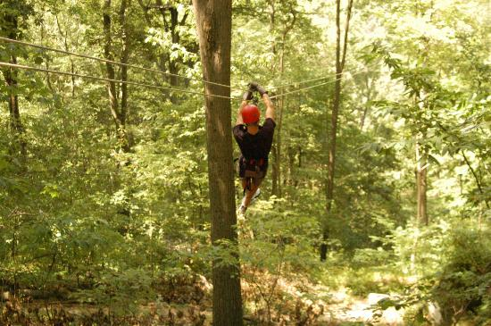 Tree Frog Canopy Tours Zipline: zipping along