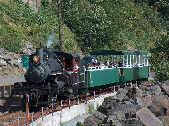 Harborview Inn & RV Park: Ride the steam train!