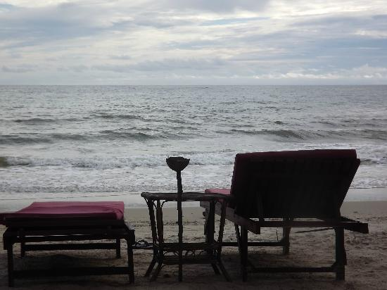Papa Pippo Bar, Restaurant & Bungalows: view from the beach