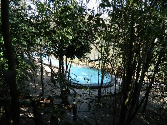 Oliveros, Argentina: PILETAS TERMALES EXTERIORES