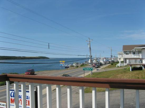 Acadian Motel: view from patio